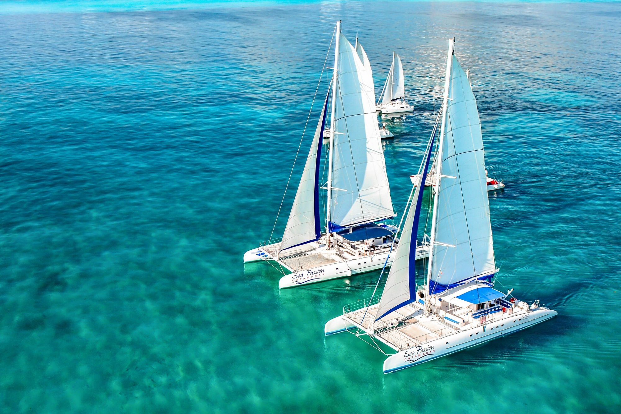 1 Private Isla Mujeres tour in catamaran - Sea Passion I II - Cancun Sailing