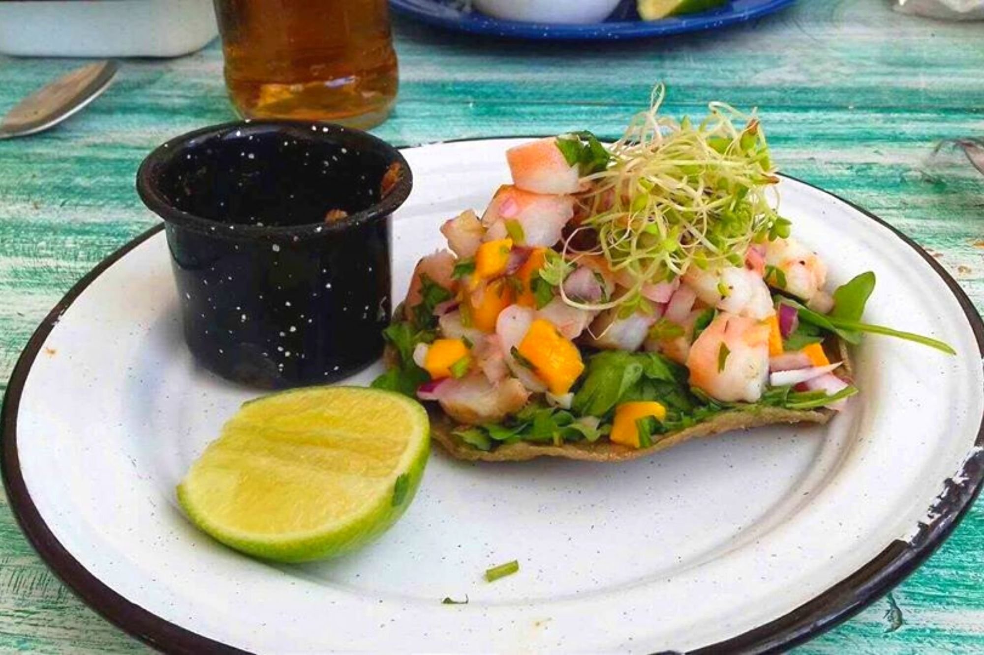 playa-indios-beach-club-isla-mujeres-tostada-cancun-sailing